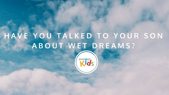anatomy for kids, wet dreams, what happens during puberty