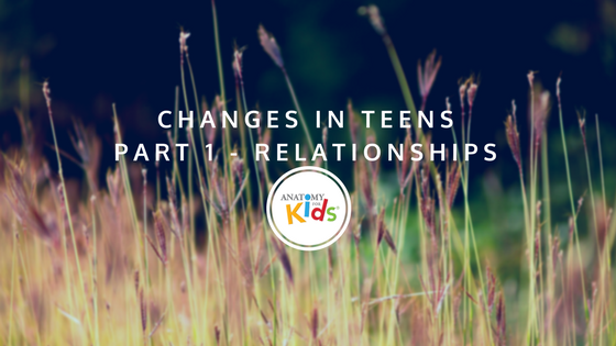 relationships, anatomy for kids, Changes in Teens