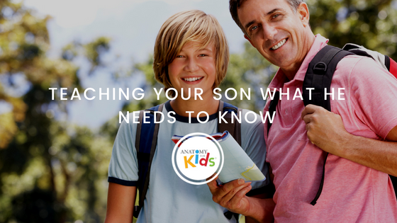 anatomy for kids, teaching, teach son, puberty