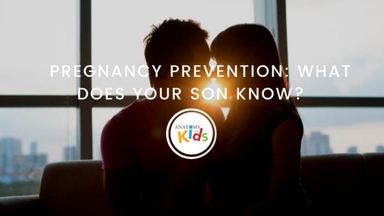 Pregnancy, Parenting Boys, Anatomy for Kids